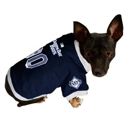 online store 055e5 1247b Tampa Bay Rays Navy Blue Mesh Pet Jersey | Tampa Bay Rays ...