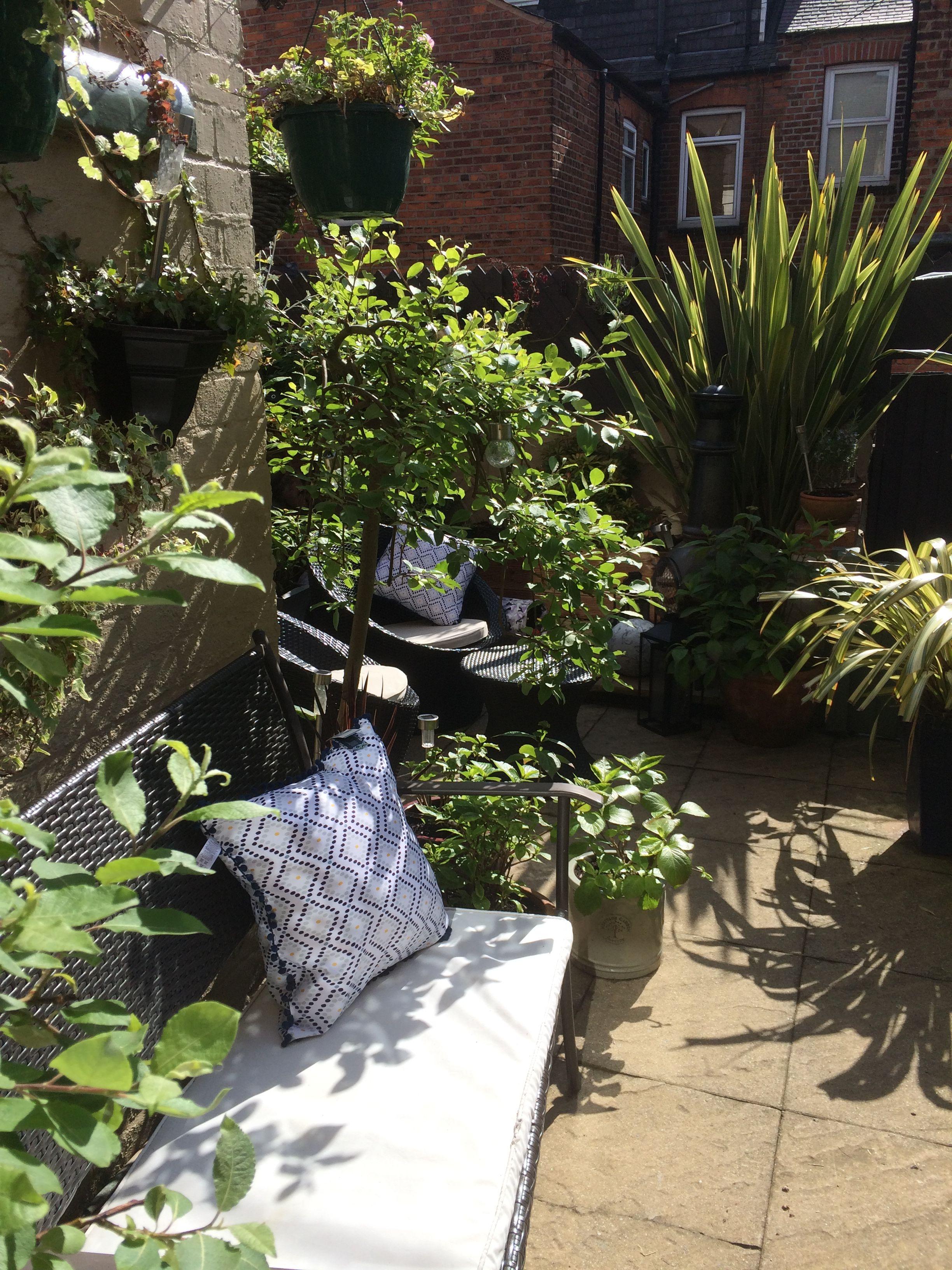 Small yard Victorian terrace house  Garden ideas victorian