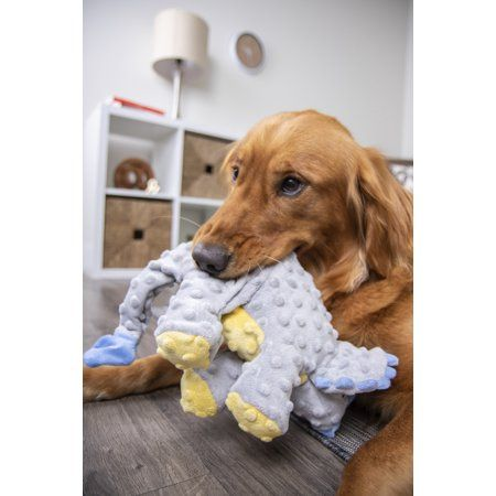 Pets Dog Toys Plush Dogs