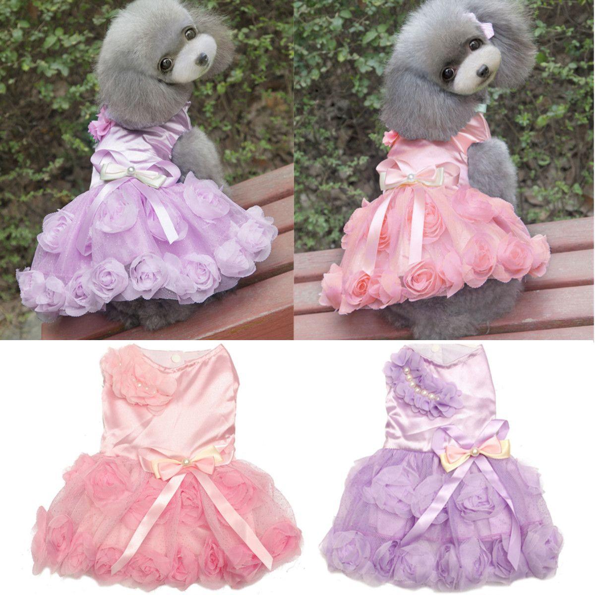 Gato perro mascota de la princesa del vestido de boda del perrito ...