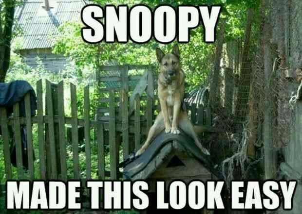 Snoopy made this look easy...