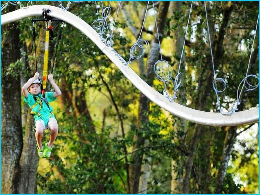 Zip Lines For Backyards diy zipline | homebuilddesigns in 2018 | pinterest | backyard