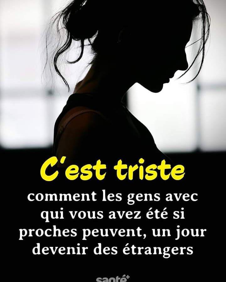 Gedanken Französisch