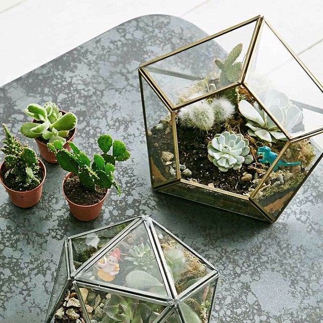 Our growing gifts selection is pretty much the Garden of Eden for your green-fingered friends, or yourself. #UOEurope #UrbanOutfitters #UOgrow #Terrarium