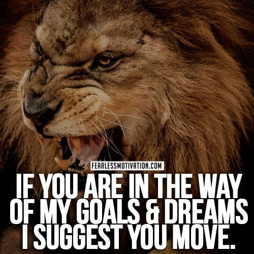 Lion Quotes In Pictures Lion quotes, Good happy quotes