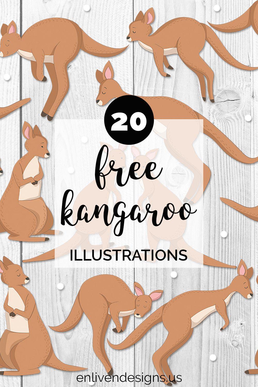 Free Kangaroo Clipart Set Enliven Designs Kangaroo Illustration Kangaroo Drawing Kangaroo Funny