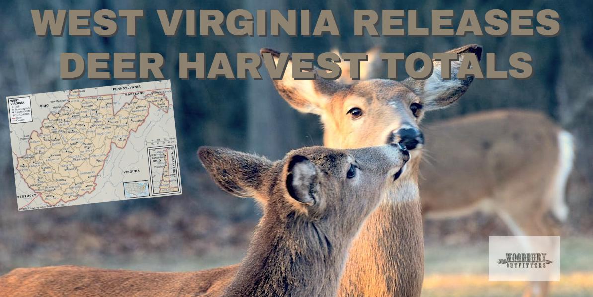 West Virginia DNR Releases 2018/19 Deer Harvest Numbers