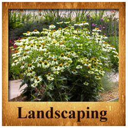Landscaping Section   Landscape, Front range, Garden on Front Range Outdoor Living id=35737