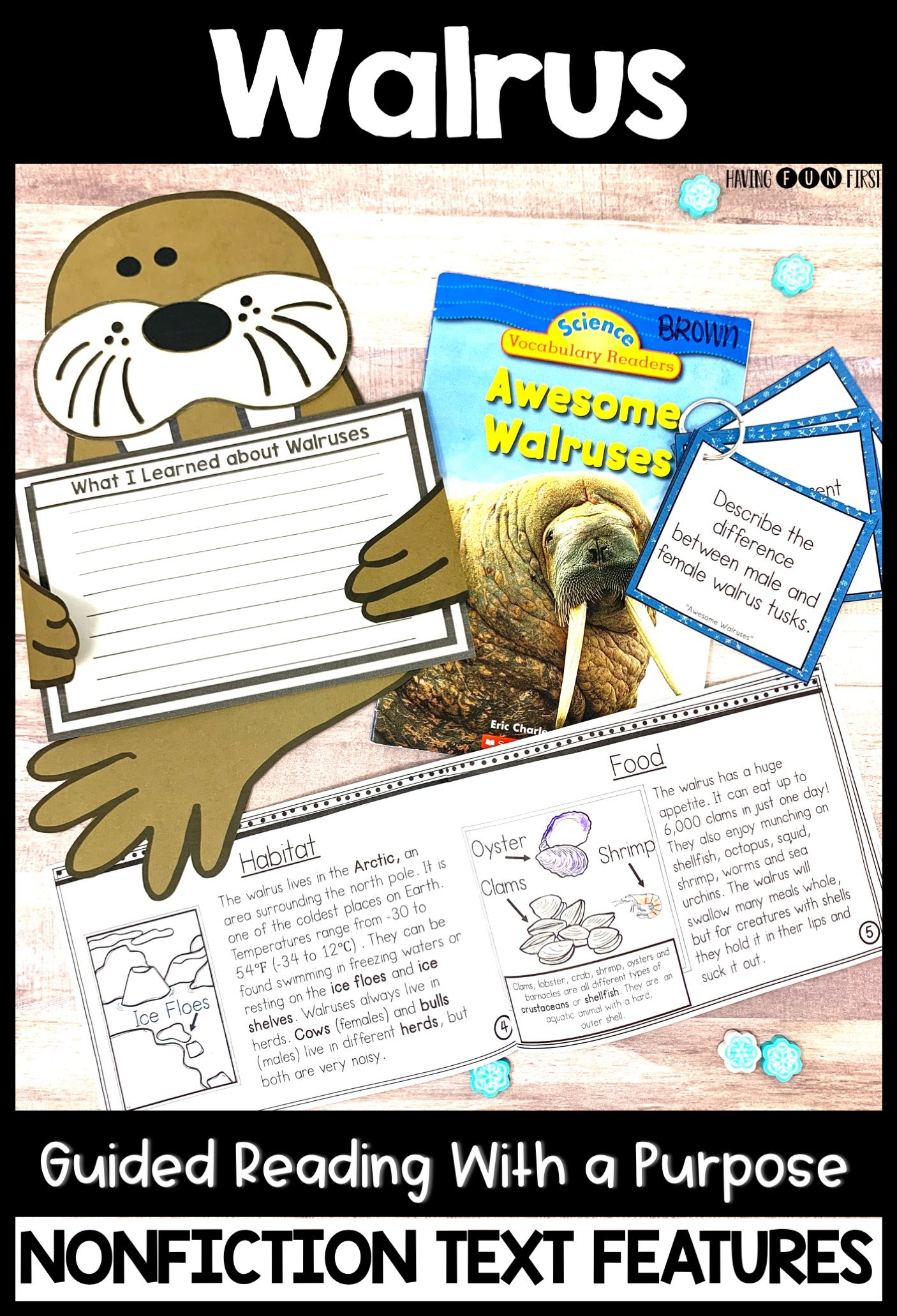 Walrus Activities Guided Reading Non Fiction Features