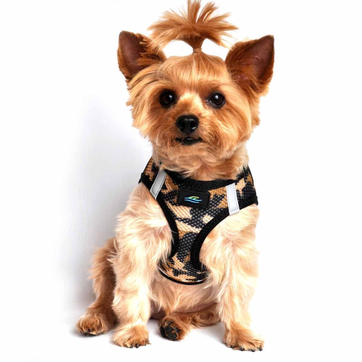 Small Dog Harness American River Choke Free Camo Dog Harness