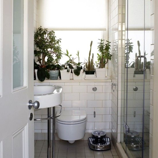 Bathroom Decorating Ideas With Plants looking good bath mat | small bathroom, concealed cistern and sinks