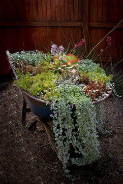 Carrinho de mão antigo com plantas.