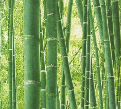 Bamb crea tu espacio zen y relajante con este papel que - Espacio zen ...