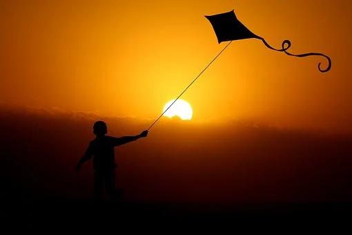 Gratis Billede Pa Pixabay Barn Dreng Dragon Dragon Fly Dreng Billeder Krage