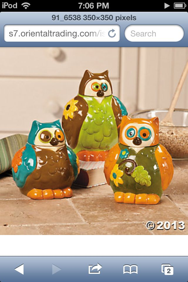 Cute owl canisters http://s7.orientaltrading.com/is/image/OrientalTrading/91_6538?$VIEWER_IMAGE$
