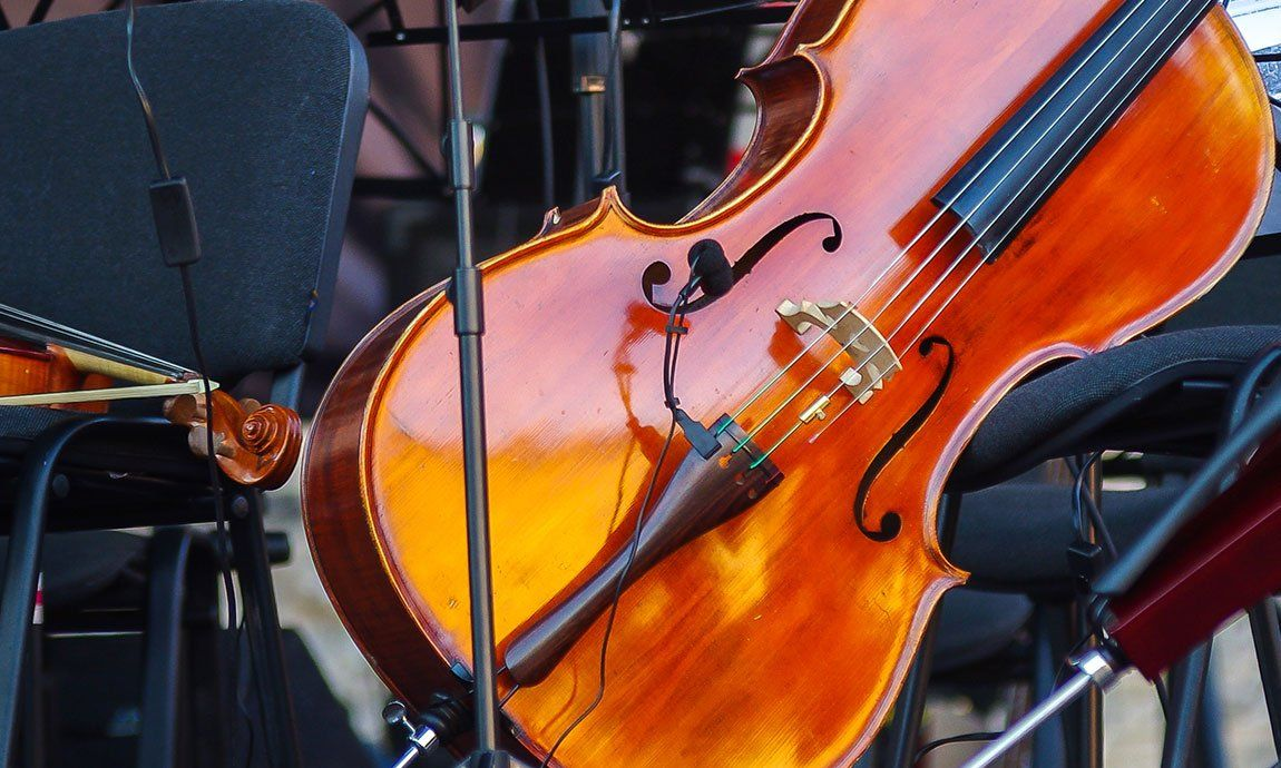 Cello Accessories for the Beginning Player (With images