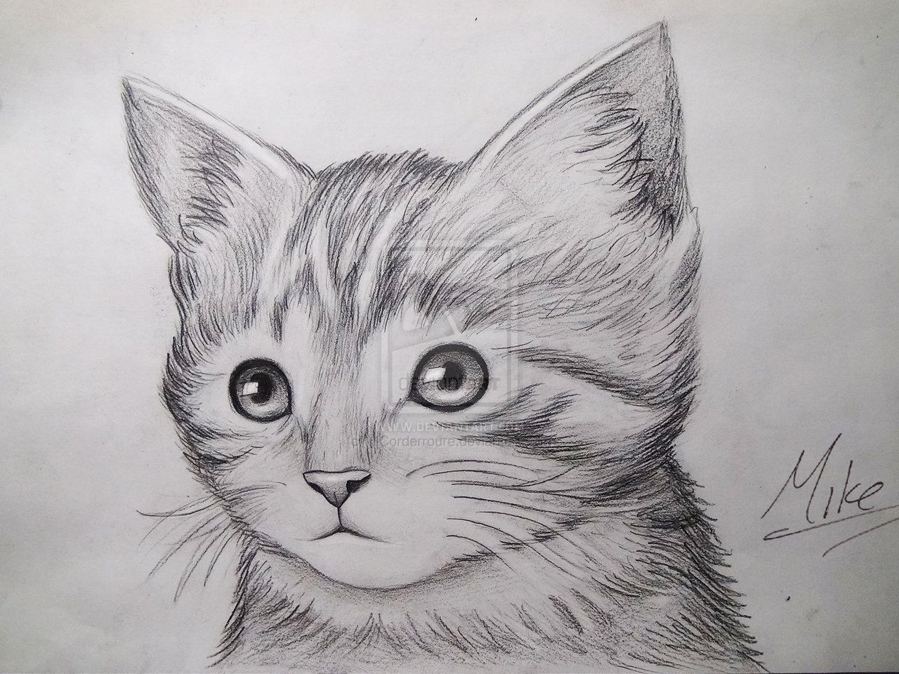flowers drawings - Google Search   Kitty drawing, Kitten ...