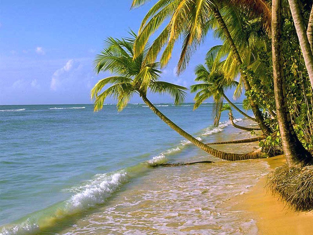beach scenes | some beautiful beach scenes | pictures | pinterest