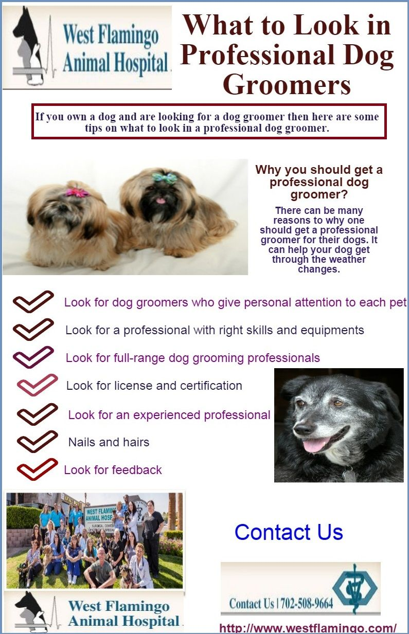If You Own A Dog And Are Looking For A Dog Groomer Then Here Are Some Tips On What To Look In A Professional Dog Groo Dog Groomers Animal Hospital Dog