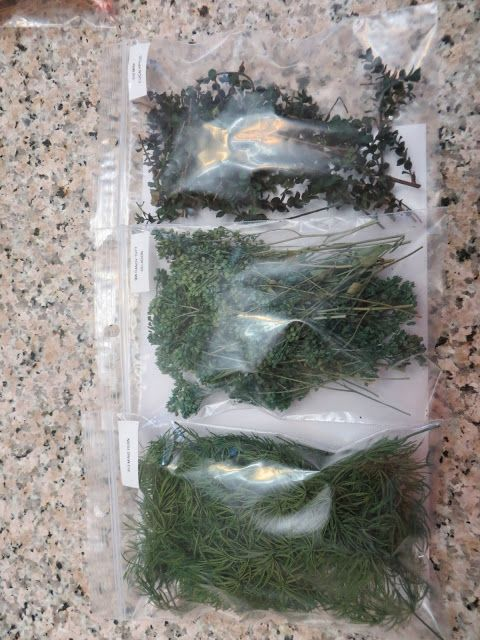 Mini eucalyptus, candytuft and one other... Might be worth looking into.