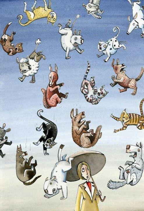 Raining Cats And Dogs Illustration Dessin