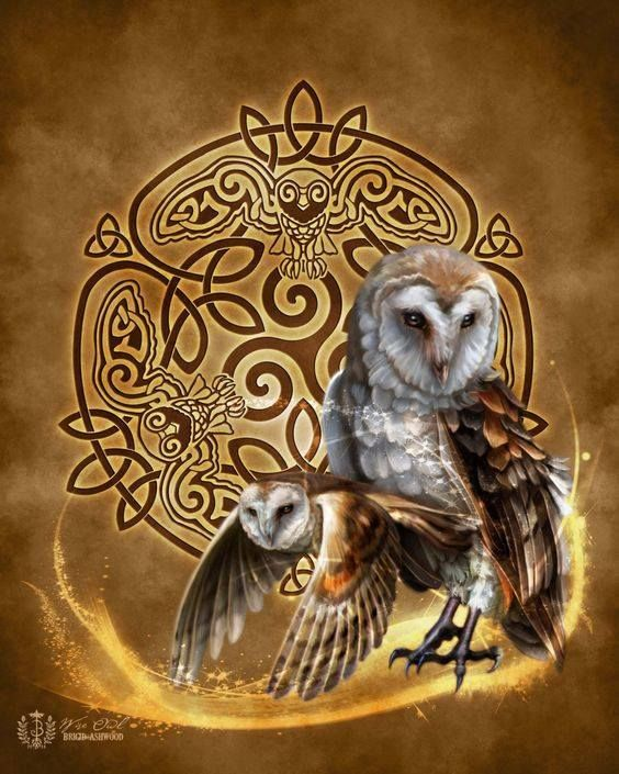 The Owl Is The Symbol Of The Feminine The Moon And The Night The