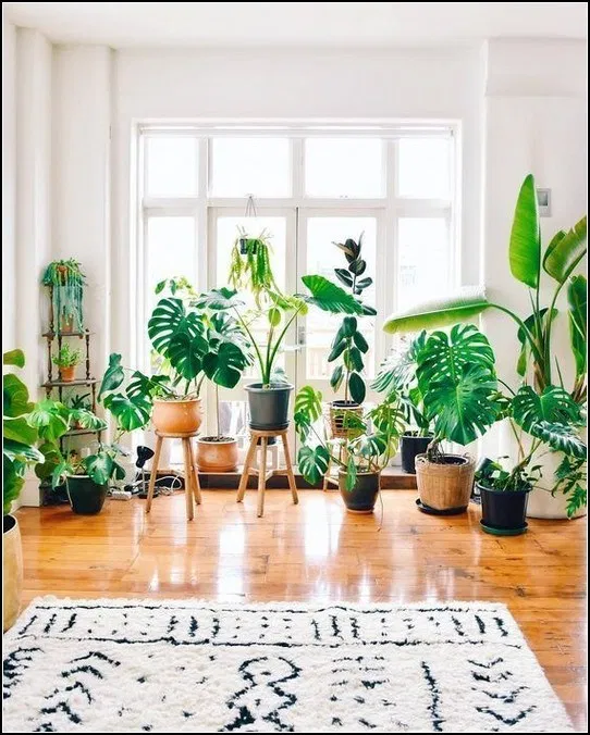 158 Diy Plant Stand Ideas To Fill Your Living Room With Greenery 10 Easy House Plants Houseplants Indoor House Plants Indoor