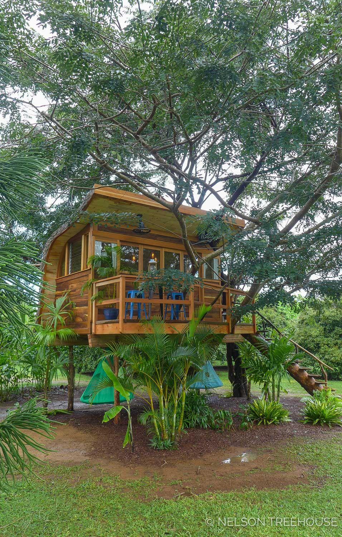Wonderful Tree House You Ll Love It 19 Tree House Kids Tree House Diy Cool Tree Houses