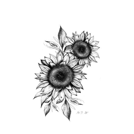 Black and white sunflower sketch art print, wall a