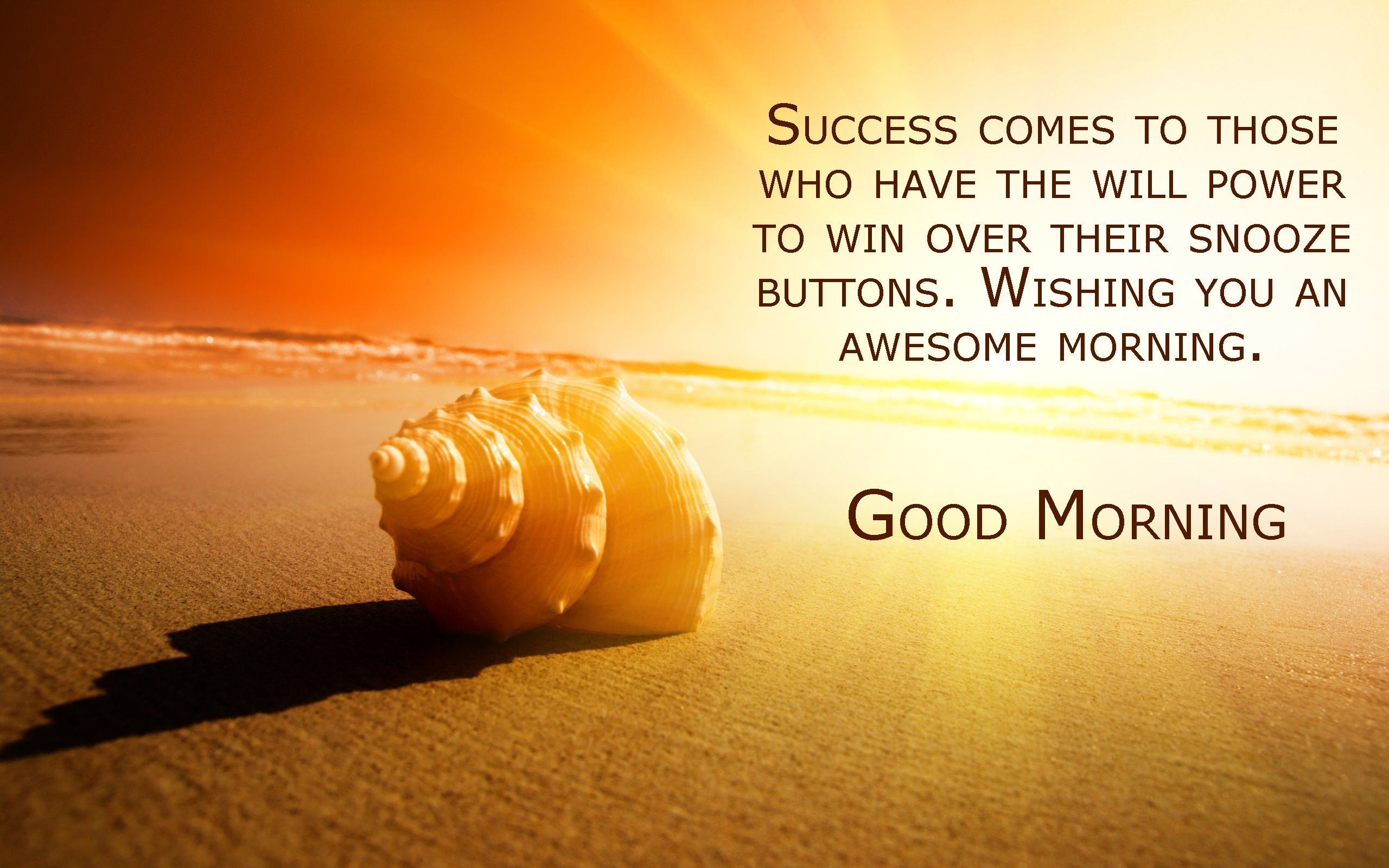 Good Morning Success Quotes Sucess Comes To Those Best Good
