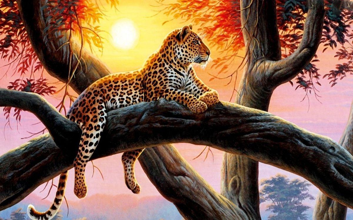 тигр и леопард в лесу картинки будет интервироваться