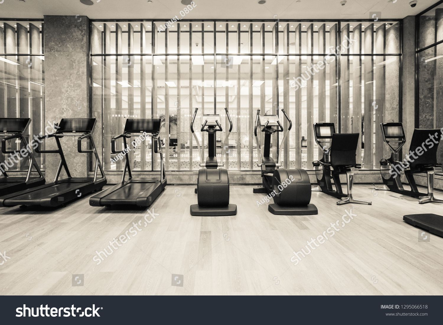 Modern Light Gym Sports Equipment In Gym Barbells Of Different Weight On Rack Ad Spon Gym Sports Modern Light Sports Equipment Modern Lighting Modern