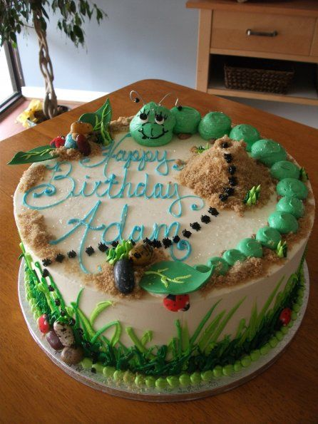 Strange Caterpillar Ant Theme Birthday Cake Clever Graham Cracker Funny Birthday Cards Online Alyptdamsfinfo