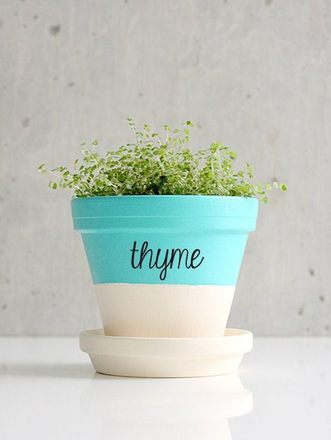 10 Tiny Herb Garden Ideas That Will Fit In Any Apartment Diy Flower Pots Herb Labels Painted Terra Cotta Pots