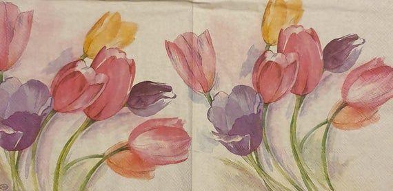 Tulip Season  - Set of 4 Napkins - IHR