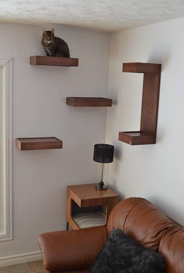 tablettes murales pour chat huve pour chats cat wall. Black Bedroom Furniture Sets. Home Design Ideas