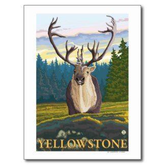 grand teton national park post cards | National Park Post Cards, Yellowstone National Park Postcard ...