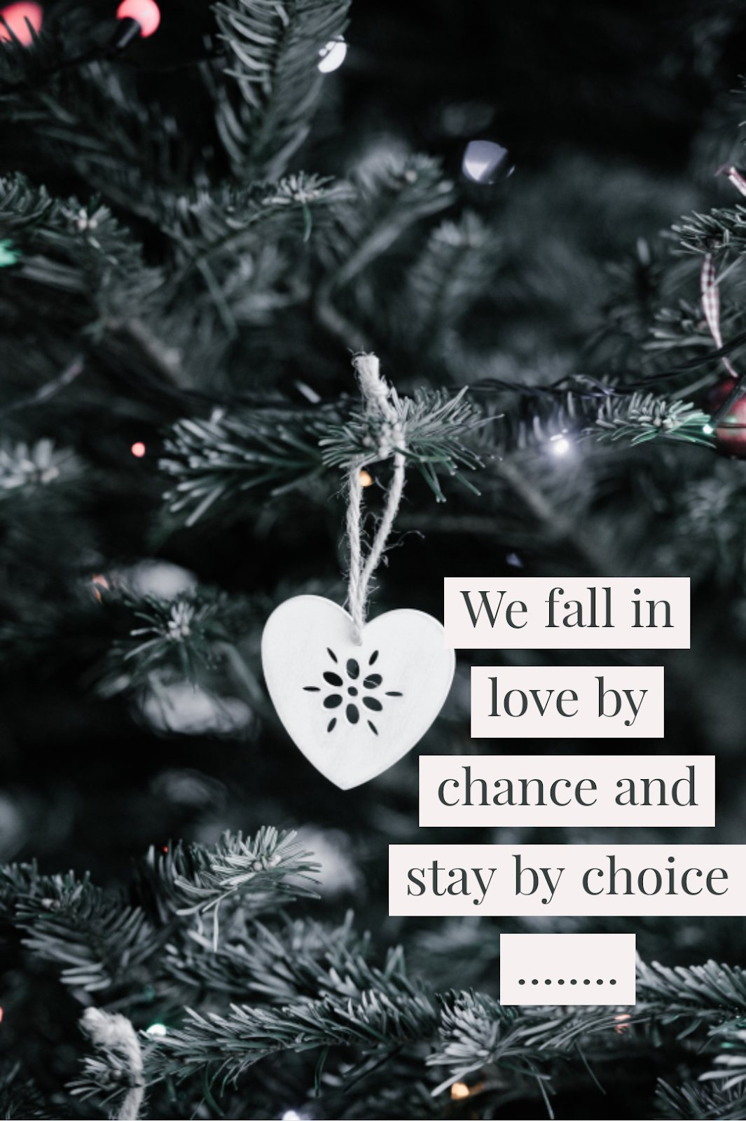 Pin By Adore Quotes On For Couples Quotes In 2020 Fall We Fall In Love Couple Quotes