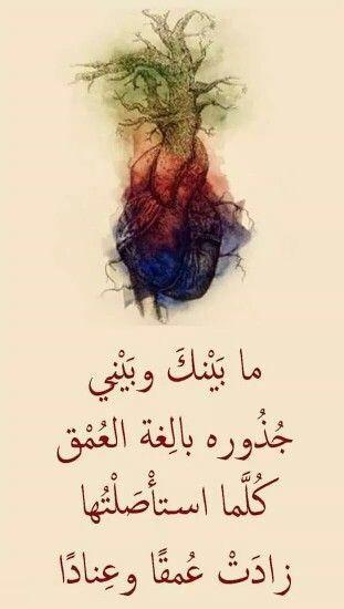 الى زوجتي التي اعشقها بعقلي وقلبي وكل مشاعري Beautiful Arabic Words True Words Words