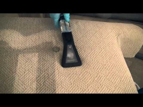 Professional Carpet Cleaning In Tampa, FL Services | Dry ...