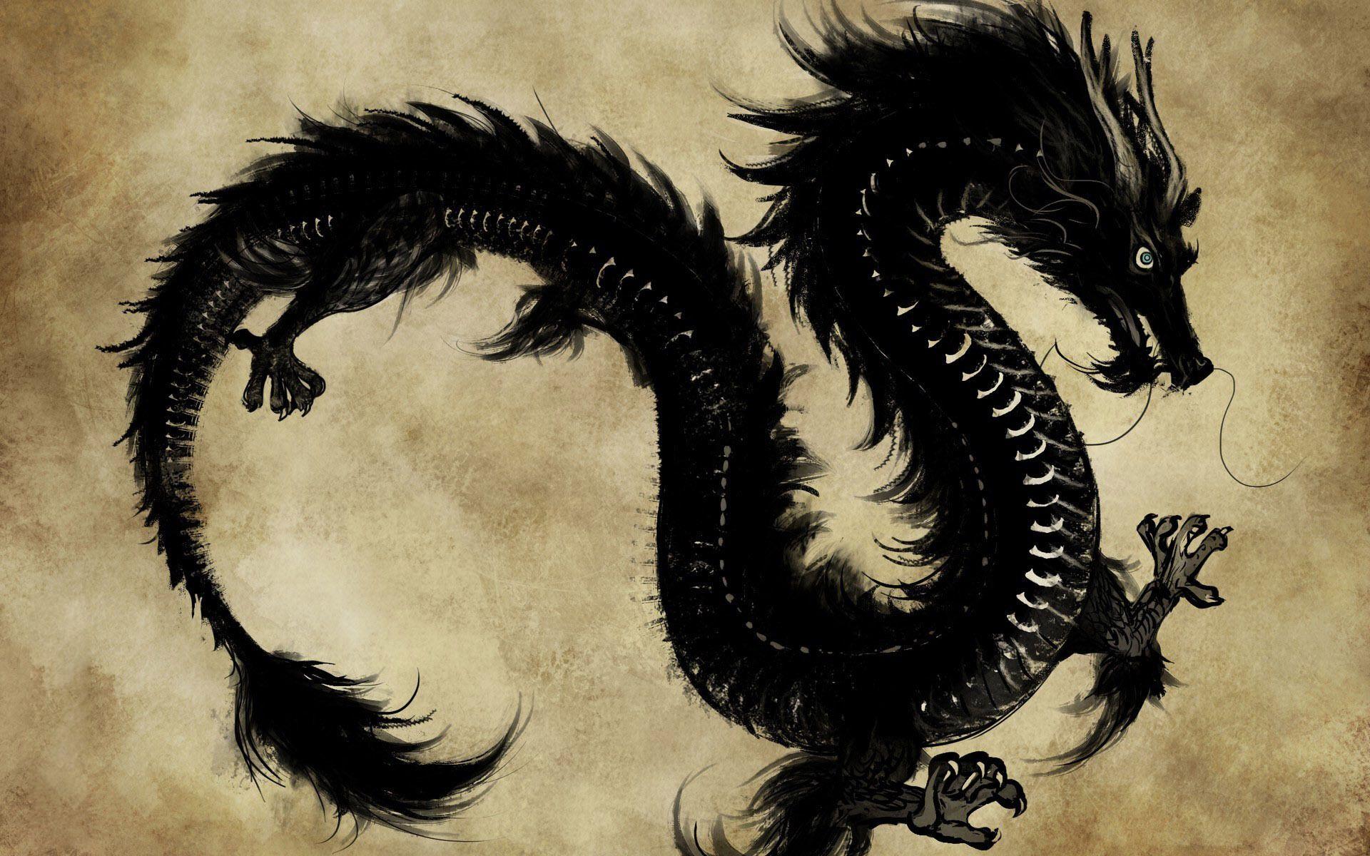 Chinese Dragon HD Wallpaper