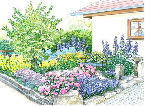 Vom Vorgarten Zum Vorzeigegarten | Schöne Gärten, Blaufichte Und