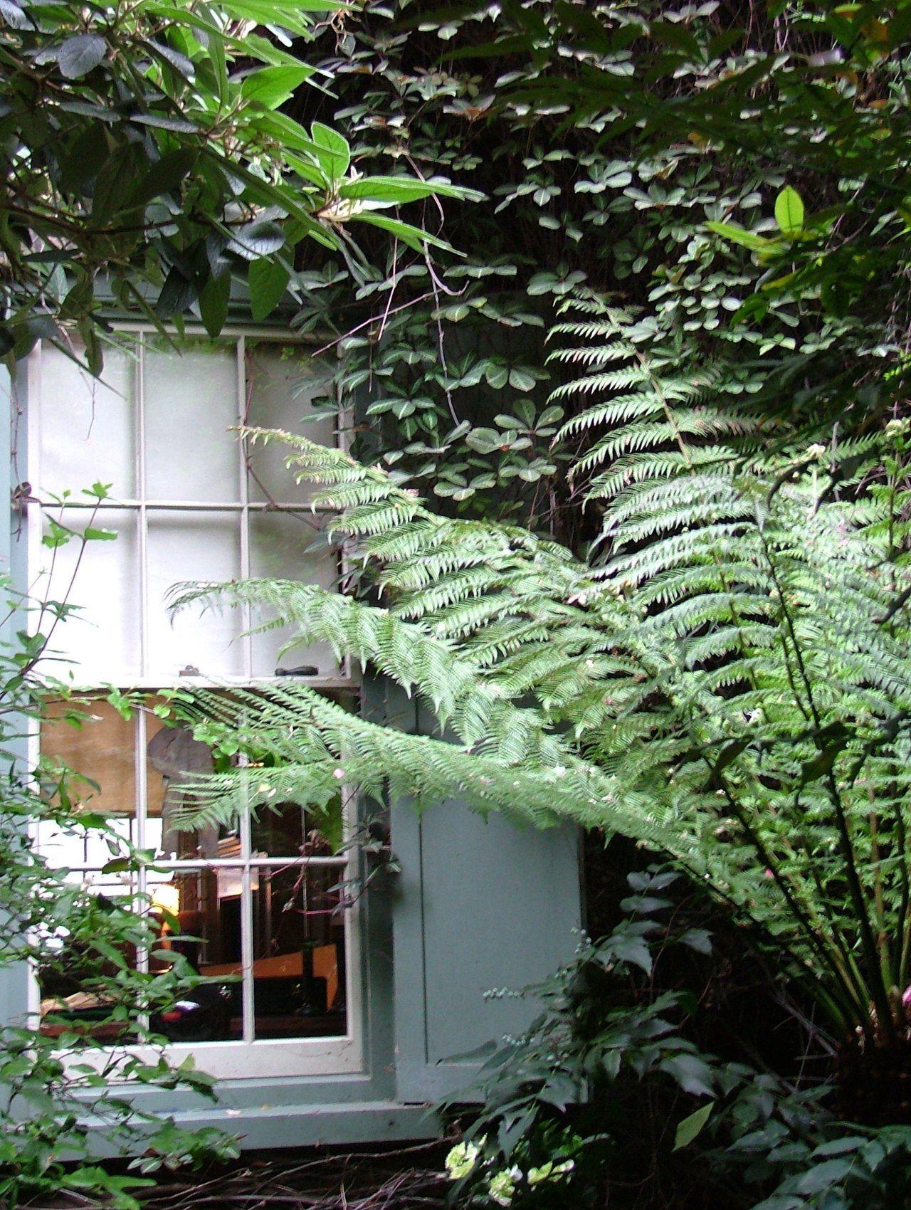 The Secret Gardens Of Spitalfields