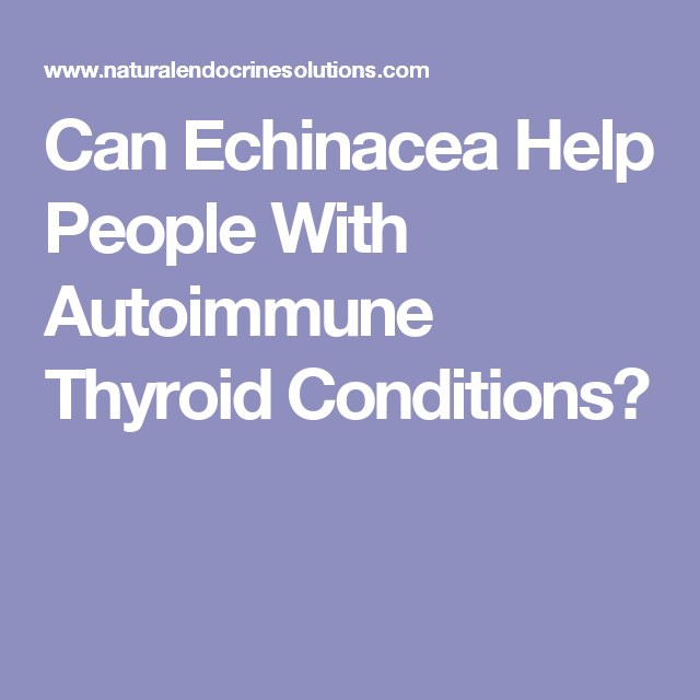 Can Echinacea Help People With Autoimmune Thyroid Conditions?