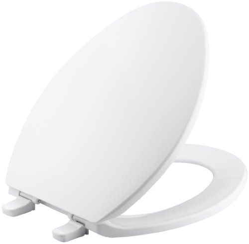 Toilet Seat Hinges Buying Guide Elongated Toilet Seat White Toilet Seats Toilet Seat