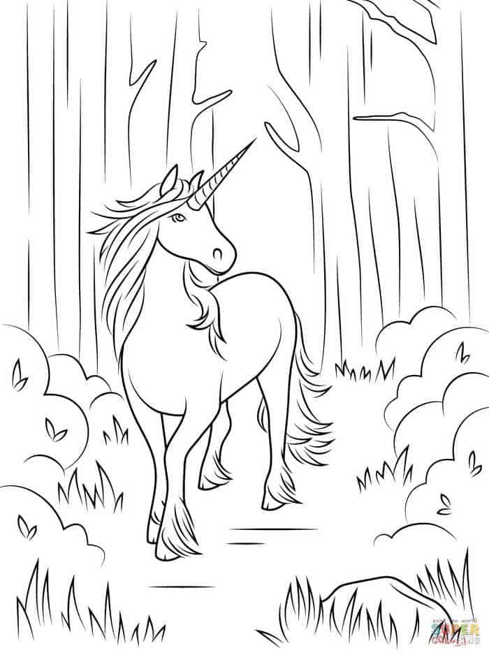 Ausmalbilder Tiere Einhorn Kostenlose Ausmalbilder Malvorlagen Pferde Ausmalbilder