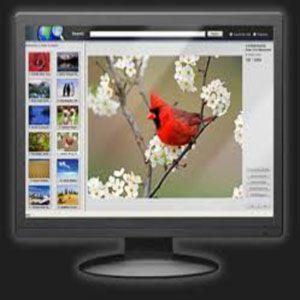 webshots desktop downloads