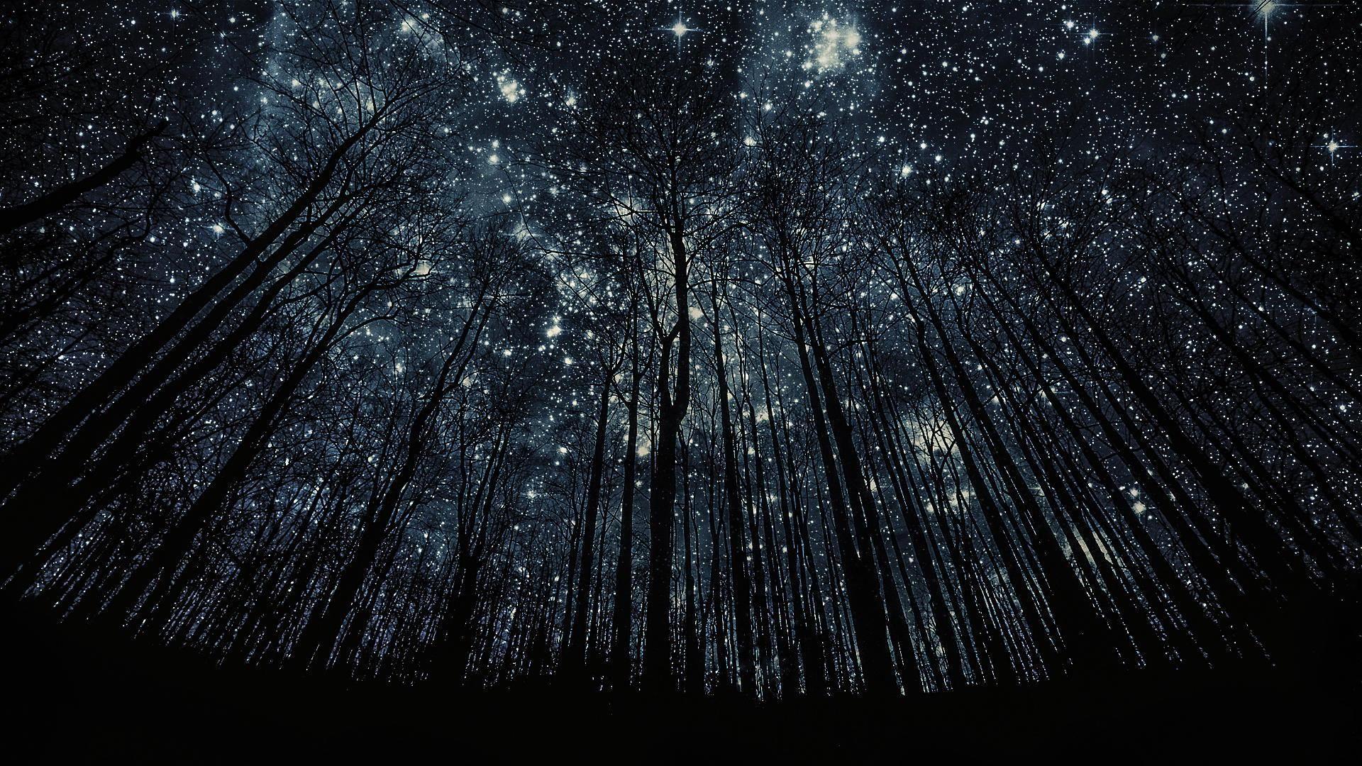 My Poetry Stars Night Sky Wallpaper Night Sky Photos Starry Night Wallpaper