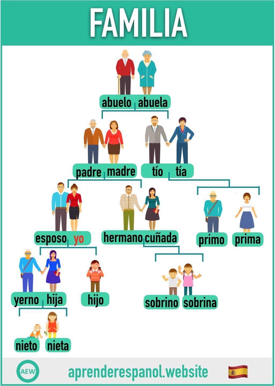 La Familia En Español Tarjetas De Vocabulario En Español Aprender Español Ejercicios Para Aprender Español