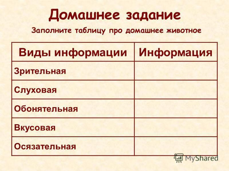 Занимательные задания по русскому языку для 3 класса поляковаответы